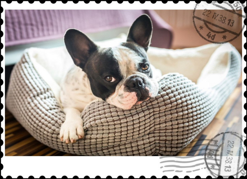 Postage Stamp Picture Frame Preview